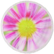 Round Beach Towel featuring the photograph Pink Aster Flower With Raindrops Abstract by Nick Biemans