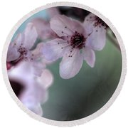 Round Beach Towel featuring the photograph Pink Blossoms by Jim and Emily Bush
