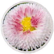 Pink Button Flower Round Beach Towel