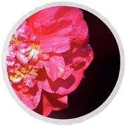 Pink Camellia  Round Beach Towel