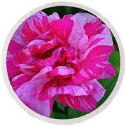 Pink Candy Stripe Rose Round Beach Towel