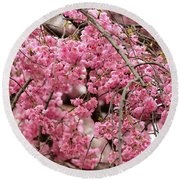 Pink Cherry Blossom Japan Arashayama Spring Holiday Diaries Round Beach Towel