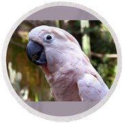 Pink Cockatoo Round Beach Towel