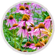 Pink Coneflower Round Beach Towel