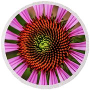 Round Beach Towel featuring the photograph Pink Cornflower by Joann Copeland-Paul