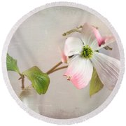 Pink Cornus Kousa Dogwood Blossom Round Beach Towel by Betty Denise