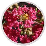 Round Beach Towel featuring the photograph Pink Crepe Myrtle Flowers by Debi Dalio