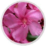 Pink Flower After Rain Round Beach Towel