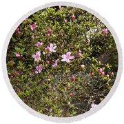 Pink Flower Bush Round Beach Towel