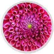 Pink Flower Close Up Round Beach Towel