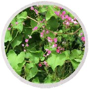 Pink Flowering Vine1 Round Beach Towel