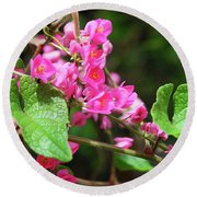Pink Flowering Vine3 Round Beach Towel