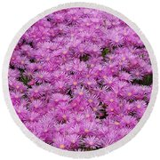 Round Beach Towel featuring the photograph Pink Flowers Field by Jasna Gopic
