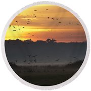Pink Footed Geese At Holkham Norfolk Uk Round Beach Towel