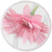 Pink Gerbera Daisy II Round Beach Towel by David and Carol Kelly