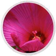 Pink Hibiscus Round Beach Towel by Mikki Cucuzzo