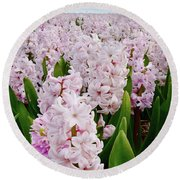 Pink Hyacinth  Round Beach Towel by Mihaela Pater