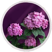 Pink Hydrangea Round Beach Towel by Judy Johnson