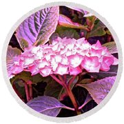 Pink Hydrangea Round Beach Towel by Stephanie Moore