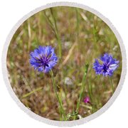Round Beach Towel featuring the photograph Pink In Between by Marie Neder