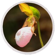 Round Beach Towel featuring the photograph Pink Lady Slipper by Roupen  Baker