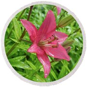 Pink Lily Flowers By Tamara Sushko  Round Beach Towel