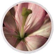 Pink Lily-macro Round Beach Towel