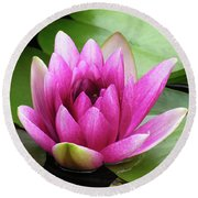 Round Beach Towel featuring the photograph Pink Lotus Flower by Betty Denise