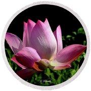 Pink Lotus  Round Beach Towel by Jeannie Rhode