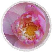 Pink Lotus Opening Round Beach Towel