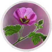 Pink Mallow Flower Round Beach Towel