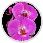 Pink Orchid Against A Black Background Round Beach Towel