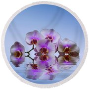 Pink Orchids Blue Background Round Beach Towel by David French