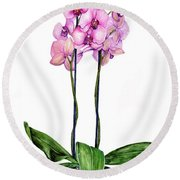 Pink Orchids Round Beach Towel