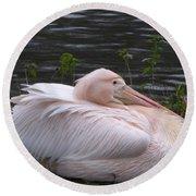 Pink Pelican Round Beach Towel