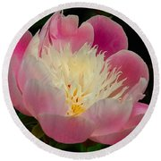 Pink Peoni Round Beach Towel by Elaine Manley