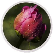 Pink Peony Bud With Dew Drops Round Beach Towel
