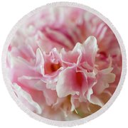 Round Beach Towel featuring the photograph Pink Perfection by Wendy Wilton
