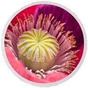 Pink Poppy Flower Round Beach Towel