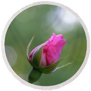 Pink Rose Bud Round Beach Towel
