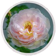 Pink Rose #c3 Round Beach Towel