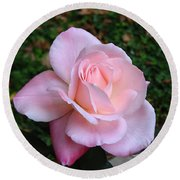 Round Beach Towel featuring the photograph Pink Rose by Carla Parris