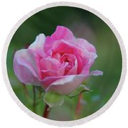 Pink Rose Round Beach Towel by Elaine Hunter