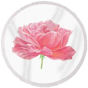 Round Beach Towel featuring the painting Pink Rose by Elizabeth Lock