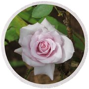 Round Beach Towel featuring the photograph Pink Rose by Jerry Battle