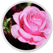 Pink Rose Round Beach Towel by Ronda Ryan