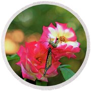 Pink Roses And Butterfly Photo Round Beach Towel