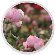 Round Beach Towel featuring the photograph Pink Roses by Laurel Powell