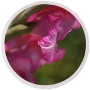Pink Side Of Gladioli Round Beach Towel