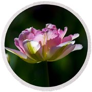Round Beach Towel featuring the photograph Pink Tulip by Angela DeFrias